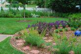 Meditation Circle June 10, 2012
