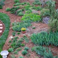 Garden View With Fresh Mulch-7