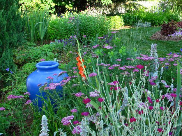 Garden View In June