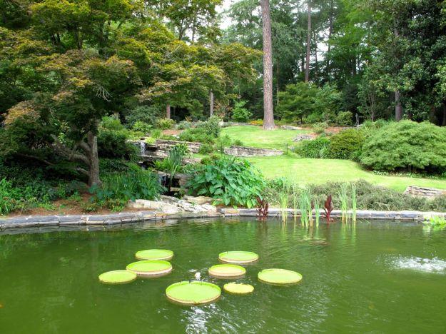 July Foliage-Terrace Fish Pool At Duke Gardens