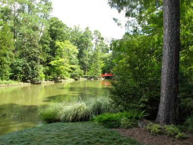 Garden Pond with Red Bridge