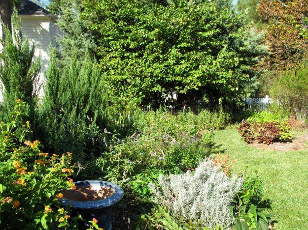 Garden View- Southern Border