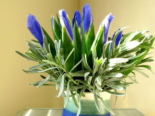 Spring Flowers-2