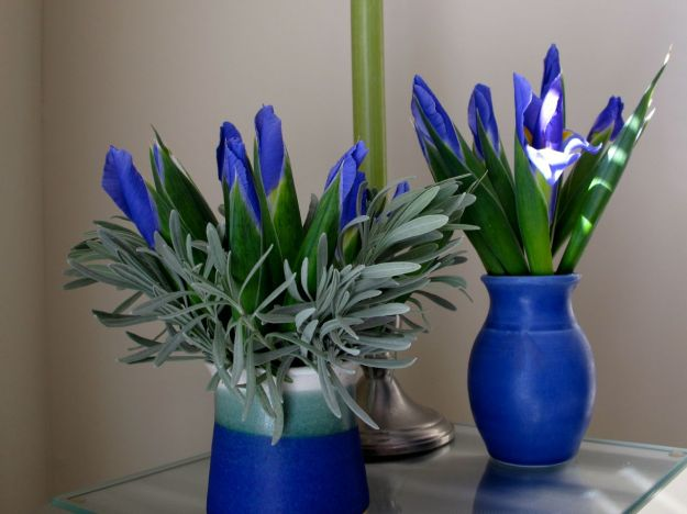 Spring Flowers-4