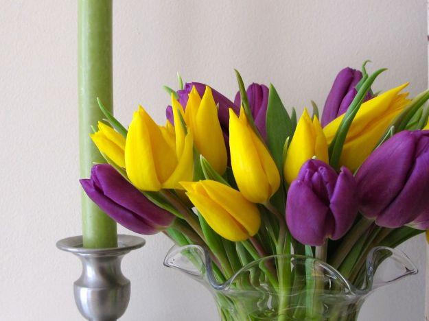 Spring Flowers-5
