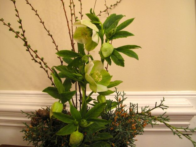 Early March Floral Design1
