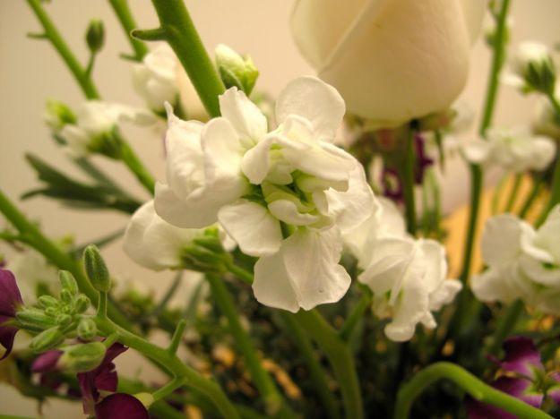 Flowers In A Mug-8