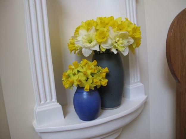 Narcissus5