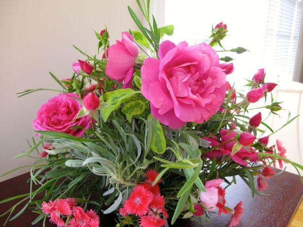 A pass-along rose
