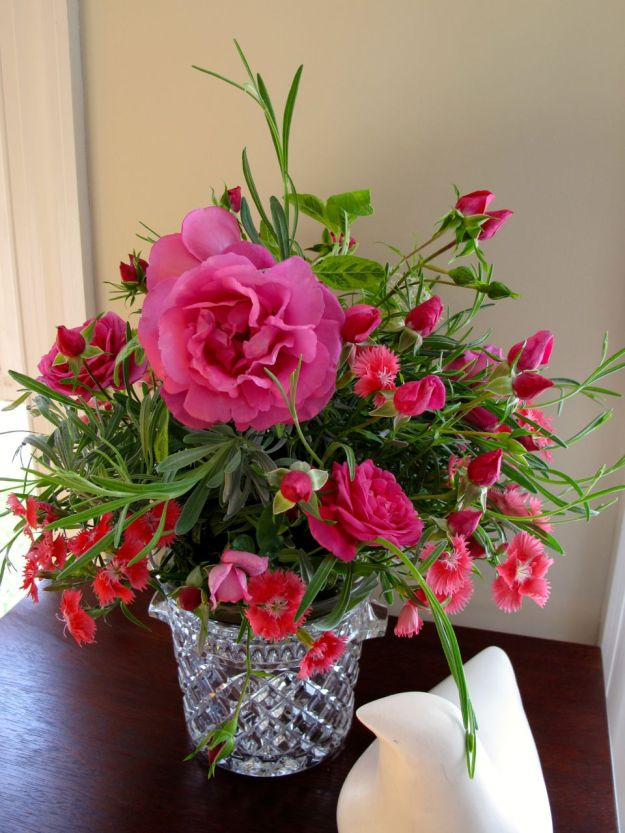 Roses and Lavender-5