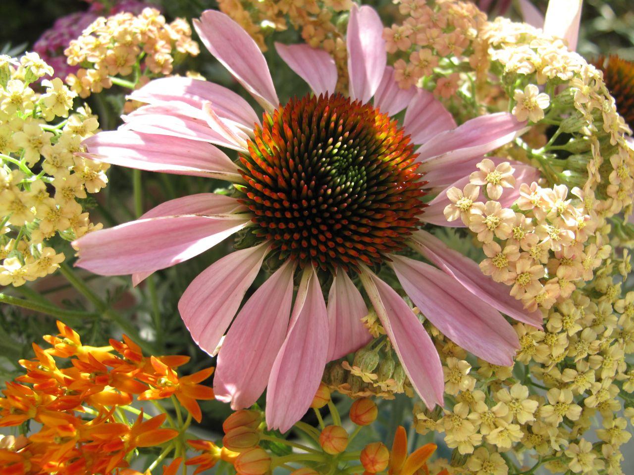 In A Vase Monday—Cottage Garden Bouquet