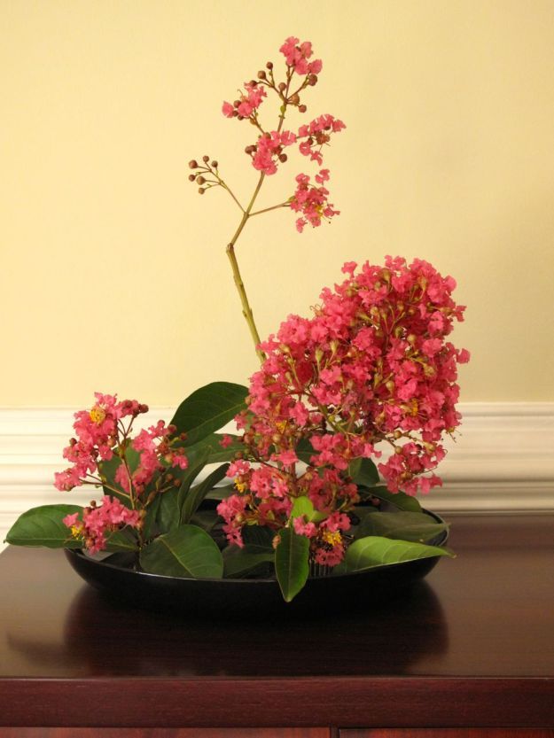 Formal Design Using Lagerstroemia (Crape Myrtle)