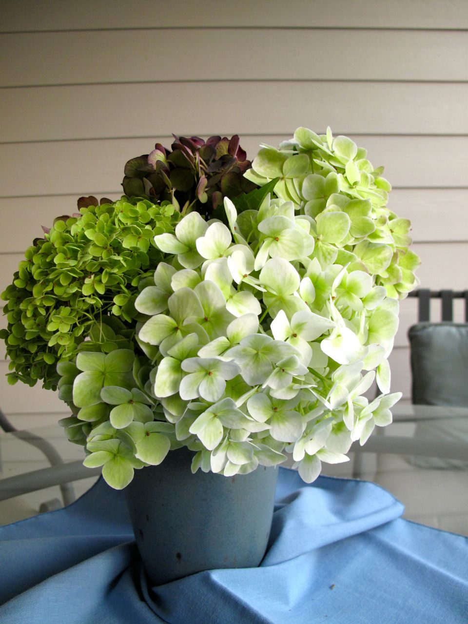 In A Vase On Monday Sisters Hydrangeas Pbmgarden