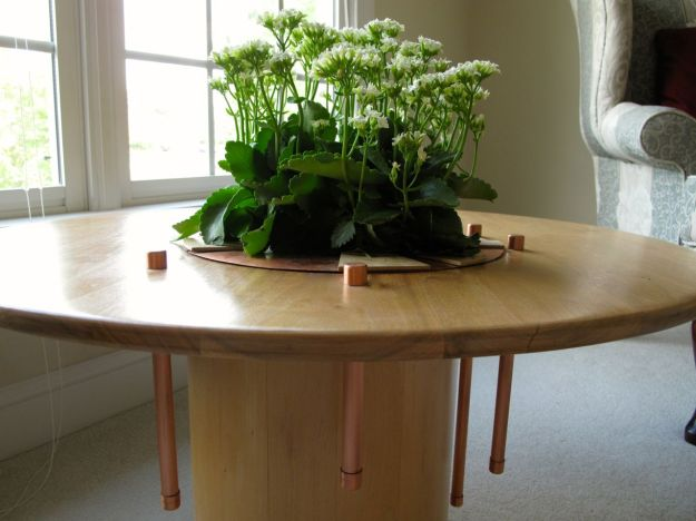 Kalanchoe In Walnut Plant Table