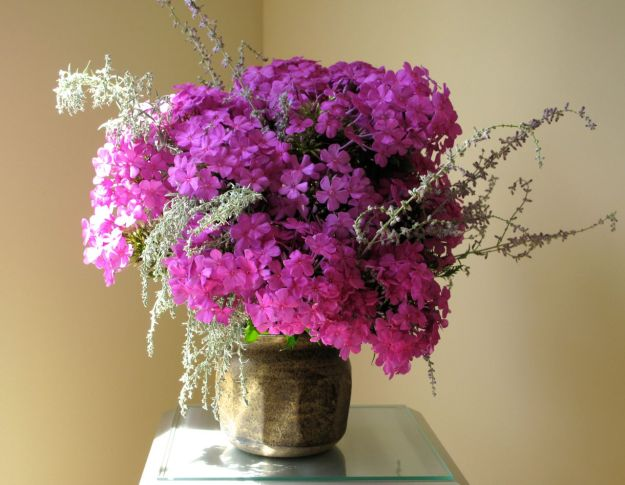 In A Vase On Monday-Garden Phlox
