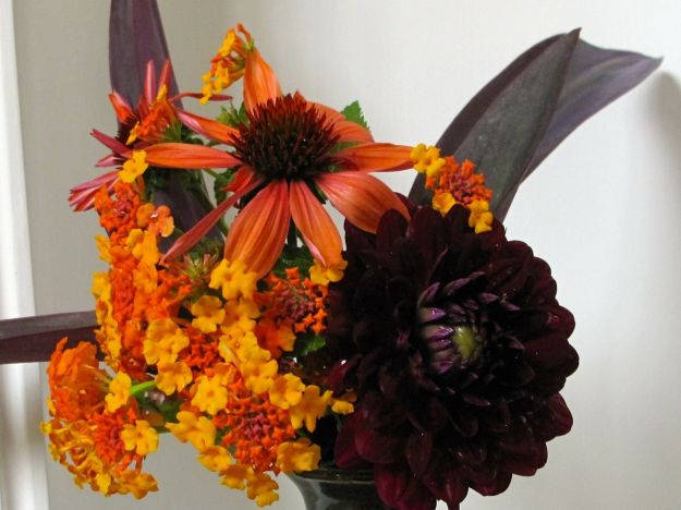 Rich, vibrant colors dominate these flowers.