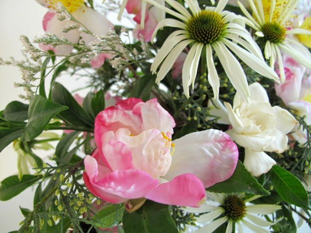 In A Vase On Monday-Camellias and Gardenias (with Echinacea)