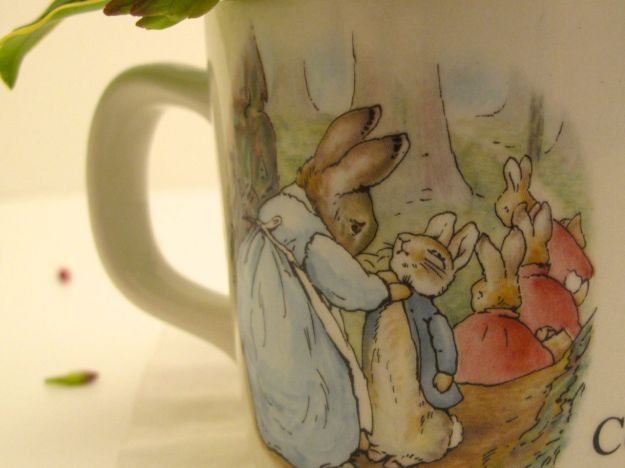 Peter Rabbit Cup, England