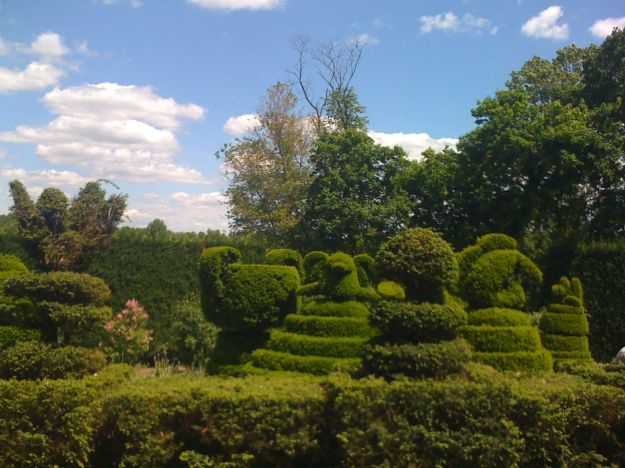 Sculpture Garden Topiaries