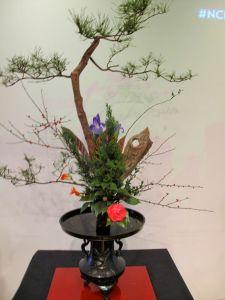 Classical Ikebana - Landscape