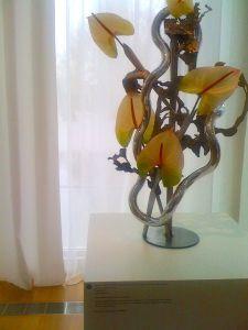 Jinny Marino's Design