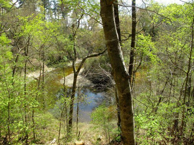 Bluff Garden and Cross Creek Overlook