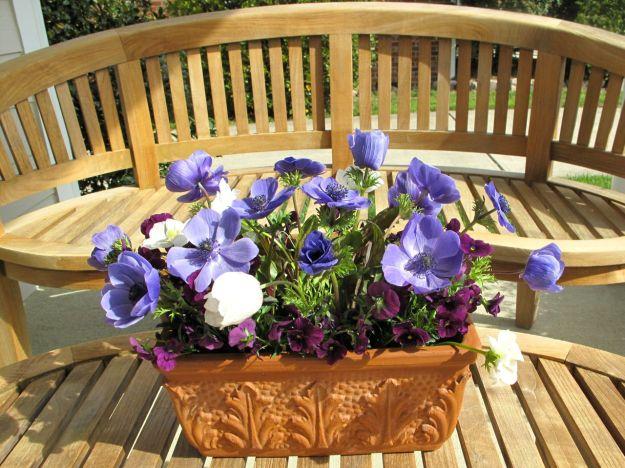 Anemone Arrangement On Front Porch