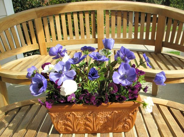 Anemone Arrangement On Front Porch