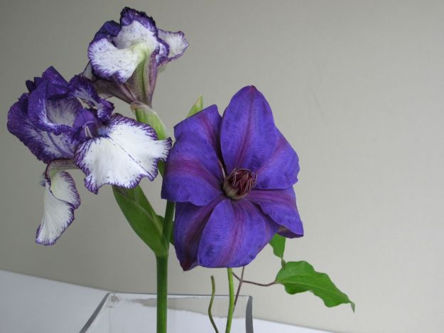 In A Vase On Monday - Iris and Clematis