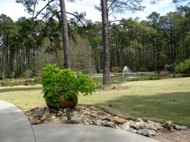Planter behind Wyatt Visitors Pavilion - Looking toward Cypress pond