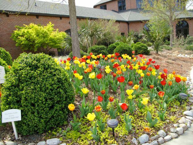 Wyatt Visitors Pavilion Entrance - Cape Fear Botanical Garden