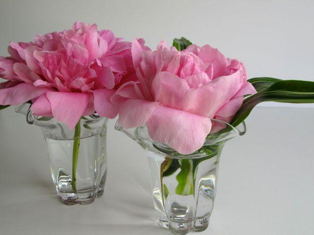 Grandmother's Vases