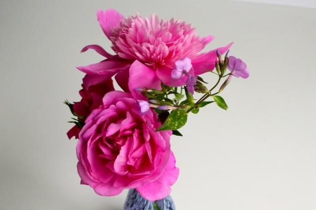 Old-fashioned passalong rose