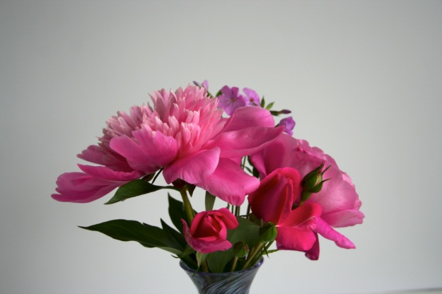 Peony, Phlox and Roses-6