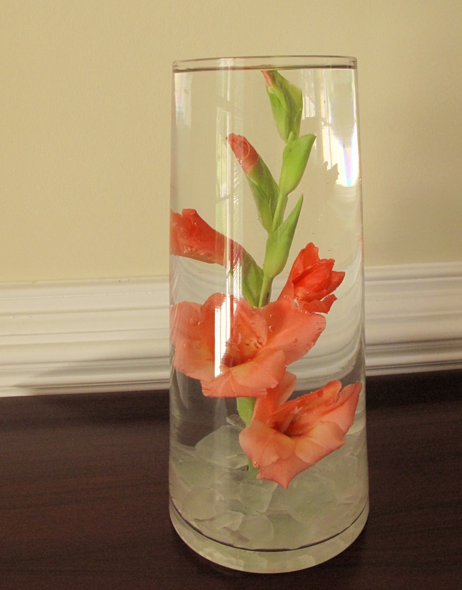 In A Vase On Monday\u2014Literally
