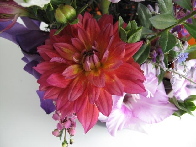 Dahlia 'Firepot', Gladiolus