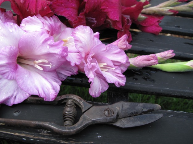 Vintage Flower Clippers