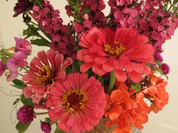 Sweet pea, Gomphrena, Zinnia, Pelargonium, Angelonia