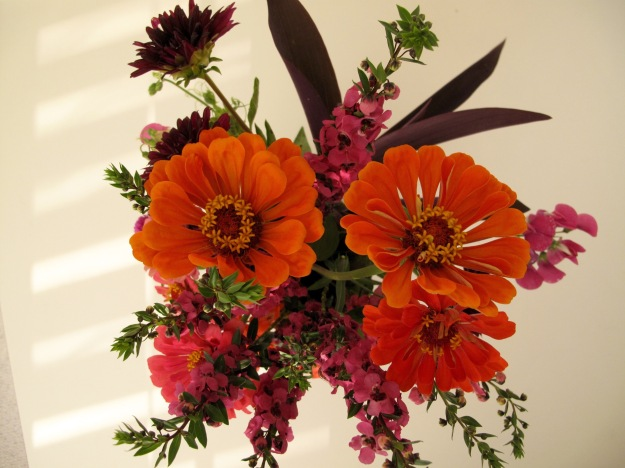 Zinnia, Angelonia, Dahlia, Purple heart and Sweet pea