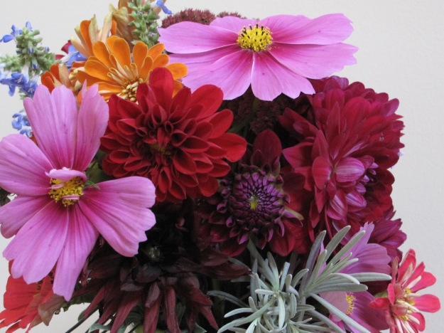 Cosmos, Dahlias and Zinnias - In A Vase On Monday