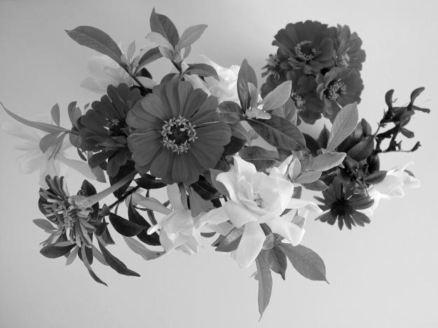 Trio of Vases - Overhead View (B&W)