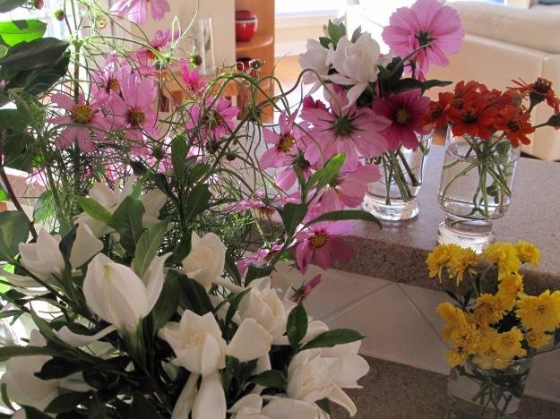 Gardenia, Cosmos, Zinnia 'Profusion Fire', Chrysanthemum