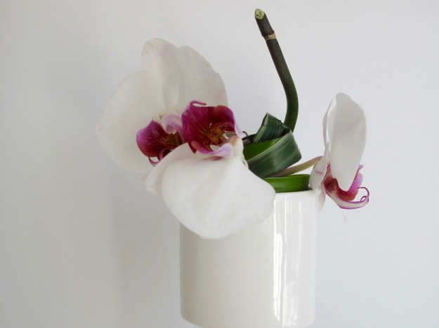 In A Vase On Monday - Orchid Blush