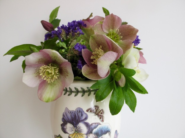 In A Vase On Monday - Helleborus x hybridus (Lenten rose)