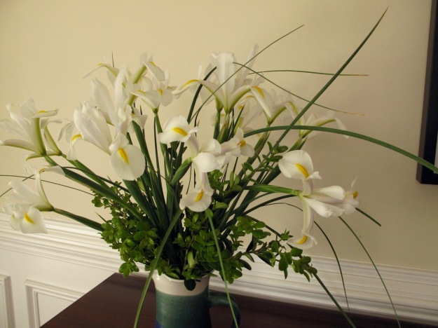 In A Vase On Monday—Dutch Iris