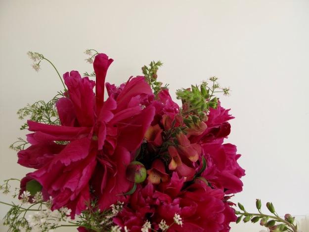 Peony, foxglove and cilantro