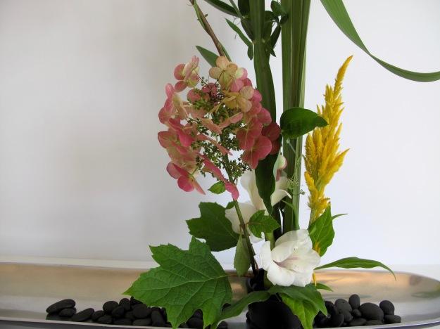 Hydrangea, Gladiolus, Celosia