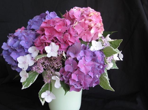 In A Vase On Monday - Hydrangea Gift