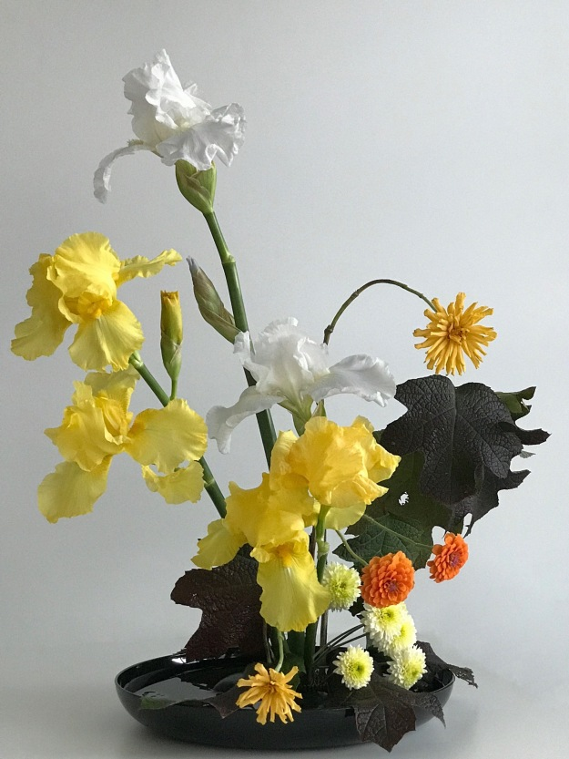 In A Vase On Monday - Iris Three-Tuple