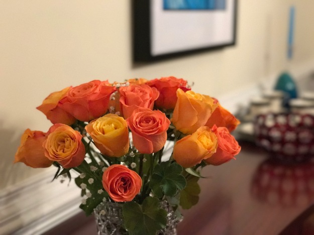 Roses-Thanksgiving 2016